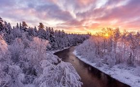 зима, закат, река, лес, деревья, пейзаж