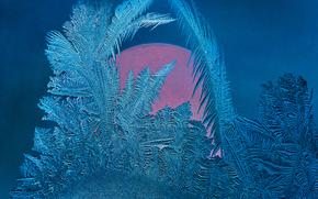 мороз, стекло, текстура, мороз на стекле, узоры, замороженное стекло