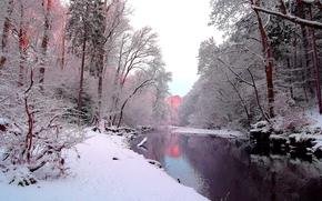 зима, река, лес, деревья, пейзаж