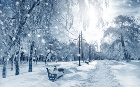 winter, park, trees, shops, footpath, snow, landscape