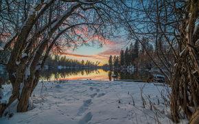 sunset, winter, lake, trees, landscape