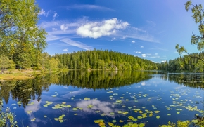Skjennungen Lake, Oslo County, norway, Norway, lake, reflection, forest, trees, summer