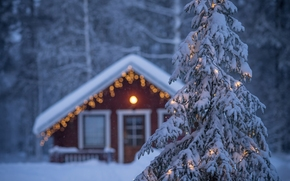 Lapland, Finland, Lapland, Finland, spruce, garland, home, winter, New Year, Christmas