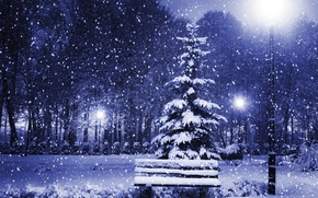 winter, night, park, A bench, lantern, snow, trees, landscape