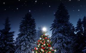 圣诞树, 新年, 圣诞壁纸