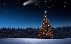 Christmas tree, New Year, Christmas Wallpaper, night