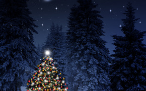 Christmas tree, New Year, Christmas Wallpaper