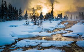 Yellowstone National Park, закат, зима, речка, деревья, пейзаж