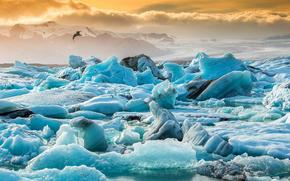 лёд, ледник, льдины, зима, море, айсберг, птица, облака