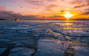 лёд, ледник, льдины, зима, море, солнце, закат, птицы
