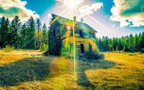 campo, vecchia casa abbandonata, Raggi del sole, alberi, paesaggio