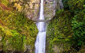 Multnomah falls, Oregon, Columbia River Gorge, Mountains, waterfall, bridge, trees, landscape