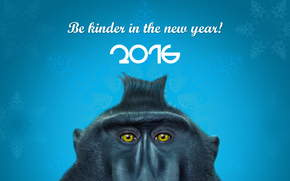 Capodanno, 2016, vacanza, data, scimmia