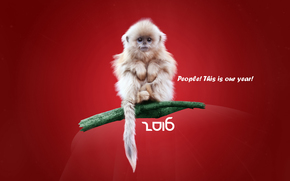 Новый год, 2016, праздник, дата, обезьянка