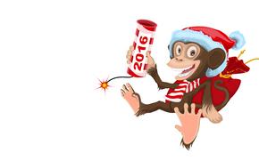 Año Nuevo, 2016, fiesta, fecha, mono