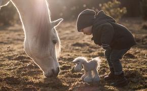 мальчик, лошадь, конь, игрушка, лошадка