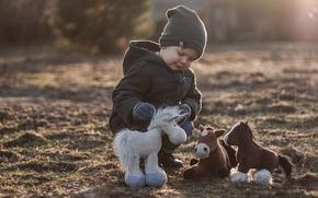 мальчик, лошадки, игрушки