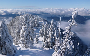 North Shore Mountains, Howe Sound, Vancouver, British Columbia, Canada, North Shore Mountains, Strait Howe, Vancouver, British Columbia, Canada, winter, snow, Mountains, forest, trees, clouds, panorama
