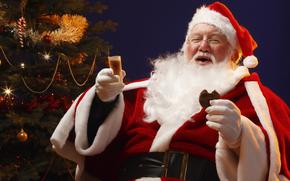Babbo Natale, Babbo Natale, Capodanno, Natale, vacanza
