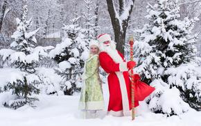 サンタクロース, サンタクロース, 雪処女, 新年, クリスマス, 休日