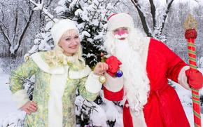 圣诞老人, 圣诞老人, 雪少女, 新年, 圣诞节, 节日