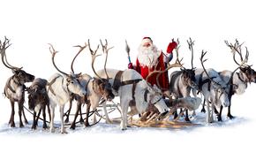 Papai Noel, Papai Noel, veado, Ano Novo, Natal, férias