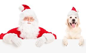 Papai Noel, Papai Noel, cão, Ano Novo, Natal, férias