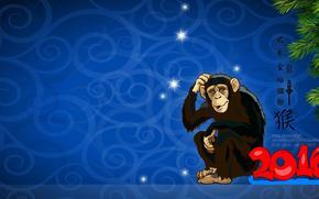 Anno scimmia rosso, scimmia, 2016, Carta da parati con una scimmia, Sfondi di Natale