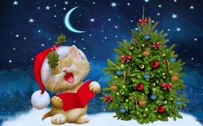 Christmas Cat, Christmas Wallpaper, fir-tree, Toys