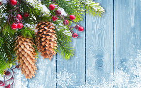 Weihnachtsbaum Zweig, Tannenbaum, Cones