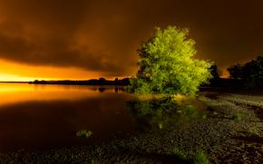 pôr do sol, lago, árvore, paisagem