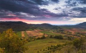 Izki, Carpathians, sunset, field, sky, landscape