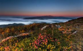 pôr do sol, Montanhas, Nuvens, Flores, paisagem