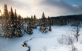 зима, закат, деревья, речка, пейзаж