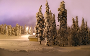 winter, night, Light Fanore, cabin, trees, landscape