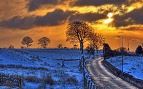 tramonto, inverno, campo, Colline, stradale, alberi, paesaggio