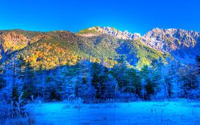 Japan, Нагано, Япония, Национальный парк Чубу-сангаку, Kamikochi, горы, деревья, пейзаж
