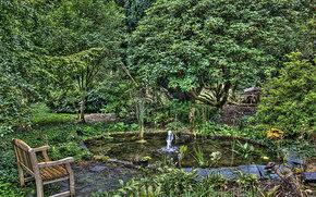 garden, A bench, FOUNTAIN, pond, trees, nature