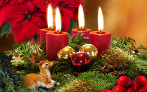 New Year, Candles, Christmas decorations, ornamentation, Balls, deer, BRANCH, Needles, Flowers, Christmas star, holiday, red