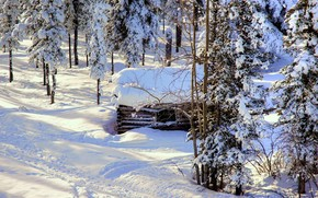winter, snow, trees, cabin, Alaska, landscape