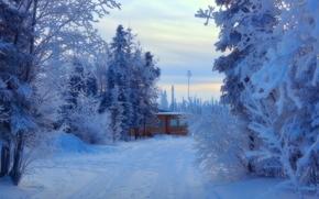 winter, road, trees, cabin, Alaska, landscape