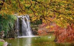 парк, водоём, водопад, осень, ветки деревьев, пейзаж