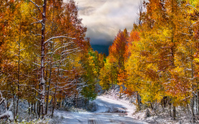 autumn, road, trees, landscape, first snow