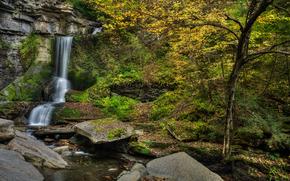 Finger Lakes, New York, waterfall, autumn, trees, nature