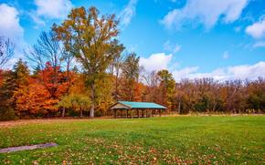 Autumn, Lowville Park Burlington, Canada, осень, поле, беседка, деревья, пейзаж