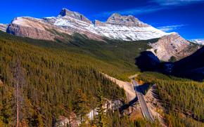 Скалистые горы, Канада, дорога, деревья, вид с верху, пейзаж