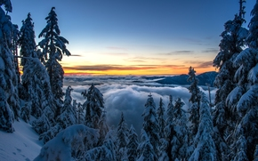 North Shore Mountains, Vancouver, British Columbia, Canada, North Shore Mountains, Vancouver, British Columbia, Canada, winter, snow, Mountains, forest, trees, spruce, sunset, clouds