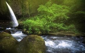 деревья, речка, камни, водопад, скалы, природа