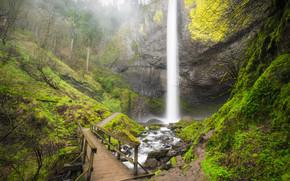 Latourell Falls waterfall, Columbia River Gorge, Oregon, мост, речка, водопад, природа