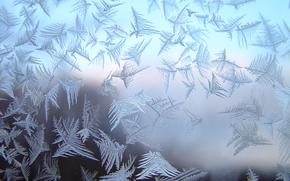 gelo, vetro, gelo sul vetro, PATTERNS, vetro smerigliato, modelli su vetro, STRUTTURA